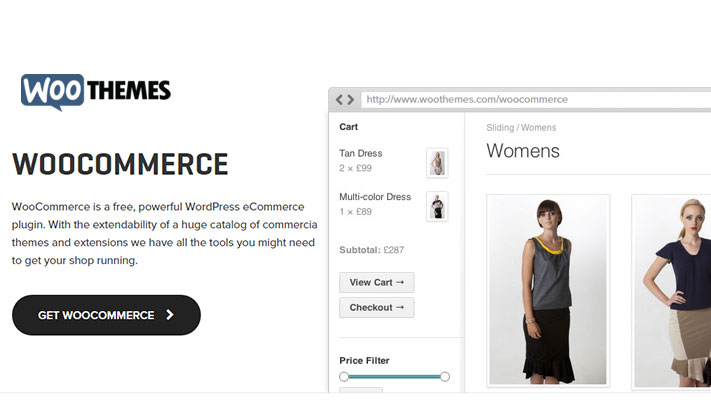 Plugins-for-WordPress-Ecommerce-Website